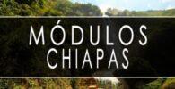módulo INE Chiapas