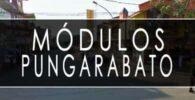 módulo INE Pungarabato