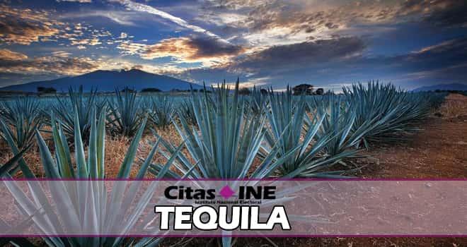 INE Tequila teléfonos y direcciones