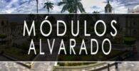 módulo INE Alvarado