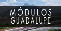 módulo INE Guadalupe