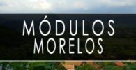 módulo INE Morelos