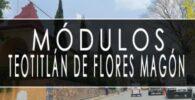 módulo INE Teotitlán de Flores Magón